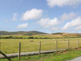 Craig Y Deryn - North Wales - 1014726 - thumbnail photo 20