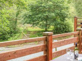Birch Tree - Devon - 1014743 - thumbnail photo 15