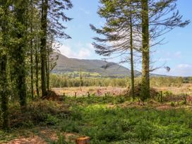 Ballyhoura Forest Luxury Homes - South Ireland - 1015267 - thumbnail photo 25
