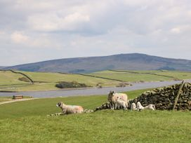 Ermysted's Cottage - Yorkshire Dales - 1016932 - thumbnail photo 13