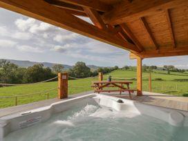Bryn Eiddon Log Cabin - Mid Wales - 1018963 - thumbnail photo 29