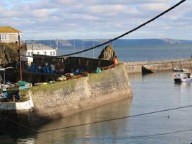 The Saltings - Cornwall - 1020381 - thumbnail photo 17