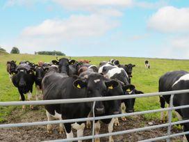 Barn End - Lake District - 1020447 - thumbnail photo 31