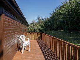16 Amber Wood Lodge - South Coast England - 1021624 - thumbnail photo 20