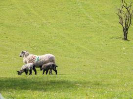 Hoopers End - Lake District - 1022008 - thumbnail photo 34