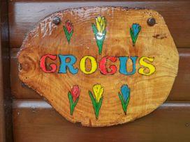 Crocus Lodge - Cornwall - 1022321 - thumbnail photo 3