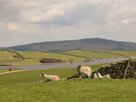 Bwythn Penfro - Yorkshire Dales - 1022435 - thumbnail photo 16