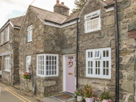 The Toll House (Tolldy) - North Wales - 1022583 - thumbnail photo 2