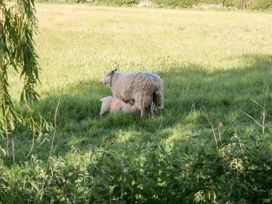 Gardener's Lodge - Whitby & North Yorkshire - 1025557 - thumbnail photo 27