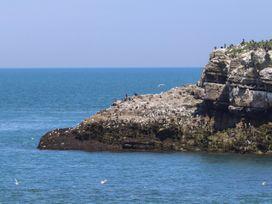 Lanka - Anglesey - 1025822 - thumbnail photo 29