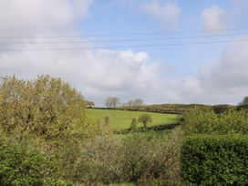 Pampas - Cornwall - 1026322 - thumbnail photo 27