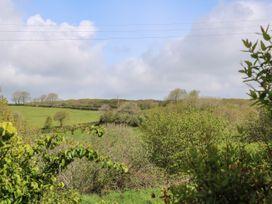 Pampas - Cornwall - 1026322 - thumbnail photo 28