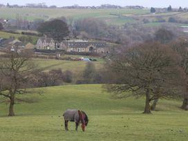 Lower Rookes Farm, Barn Cottage - Yorkshire Dales - 1027270 - thumbnail photo 16