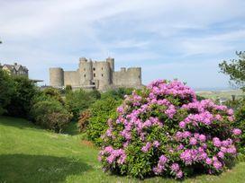 Bryn Awelon - North Wales - 1027332 - thumbnail photo 29