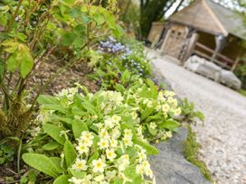 Mimi's Cottage - Cornwall - 1027416 - thumbnail photo 10