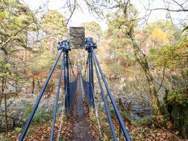 Badgers Sett - Yorkshire Dales - 1027477 - thumbnail photo 31