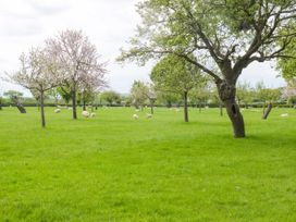 Top Style Orchard - Cotswolds - 1027511 - thumbnail photo 19