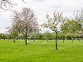 Top Style Orchard - Cotswolds - 1027511 - thumbnail photo 20