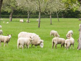 Top Style Orchard - Cotswolds - 1027511 - thumbnail photo 21