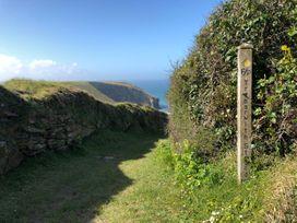 Suncrest - Cornwall - 1033728 - thumbnail photo 22