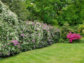 Garden House - South Coast England - 1033896 - thumbnail photo 23