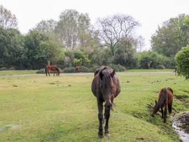 Garden House - South Coast England - 1033896 - thumbnail photo 24