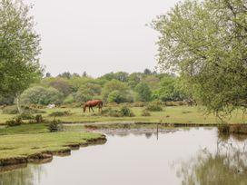 Garden House - South Coast England - 1033896 - thumbnail photo 29