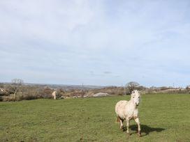 Bwthyn Gwyn - North Wales - 1034360 - thumbnail photo 18