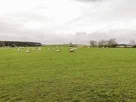Pasture View - Northumberland - 1034912 - thumbnail photo 27