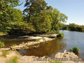 Pant y Ffynnon - Mid Wales - 1035511 - thumbnail photo 18