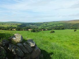 Ffynnondici Farmhouse - South Wales - 1035605 - thumbnail photo 19