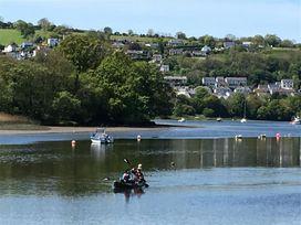 Rosevene - South Wales - 1035961 - thumbnail photo 17