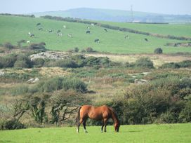 Hilltop - Anglesey - 1036946 - thumbnail photo 36