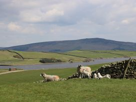 Wren Lodge - Yorkshire Dales - 1037247 - thumbnail photo 20