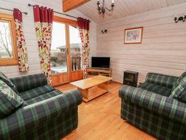 Snowy Owl Lodge - Mid Wales - 1038275 - thumbnail photo 4