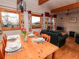 Snowy Owl Lodge - Mid Wales - 1038275 - thumbnail photo 7