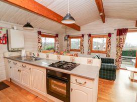 Snowy Owl Lodge - Mid Wales - 1038275 - thumbnail photo 9