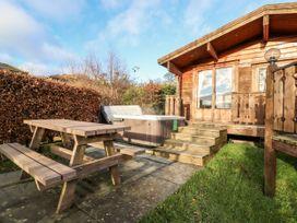 Snowy Owl Lodge - Mid Wales - 1038275 - thumbnail photo 18