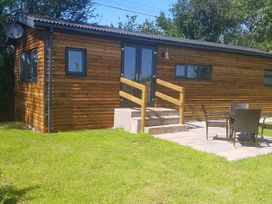 Beech Tree Lodge - Cornwall - 1038924 - thumbnail photo 2