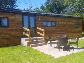 Beech Tree Lodge - Cornwall - 1038924 - thumbnail photo 20