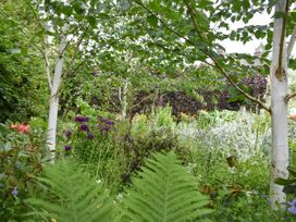 Yew Tree - Lake District - 1038926 - thumbnail photo 28