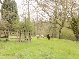 Green Farm Cottage - Peak District - 1040589 - thumbnail photo 25