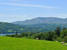 Peregrine At Stonecliffe - Lake District - 1040871 - thumbnail photo 19