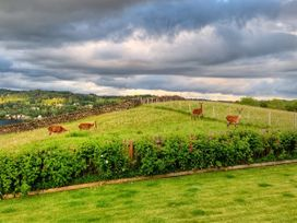 Hawkrigg Farm - Lake District - 1041275 - thumbnail photo 30