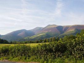 Scots Pine - Lake District - 1041319 - thumbnail photo 20