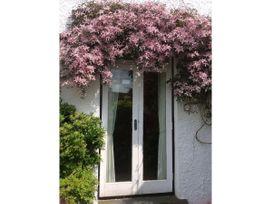 Honey Cottage - Lake District - 1041381 - thumbnail photo 17