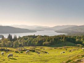Silver Birches - Lake District - 1041455 - thumbnail photo 29
