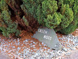 Green Moss - Lake District - 1042538 - thumbnail photo 12