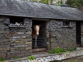 Jane's Cottage - Lake District - 1042689 - thumbnail photo 17