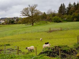 Jane's Cottage - Lake District - 1042689 - thumbnail photo 19